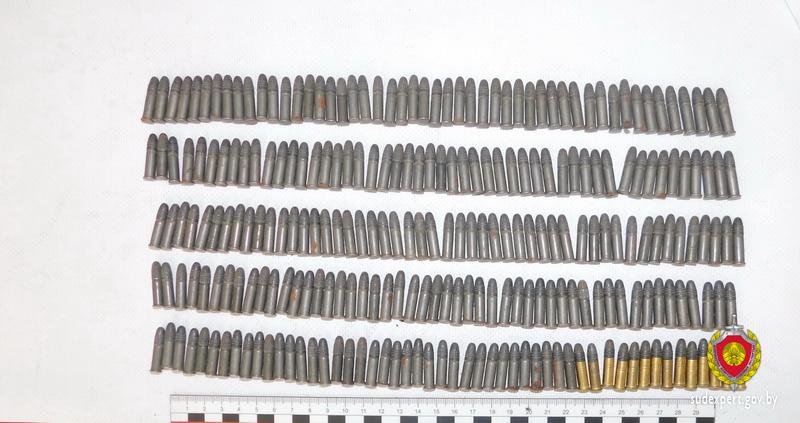 Дачная кража в Брестском районе обернулась для злоумышленника статьей о незаконном хранении боеприпасов