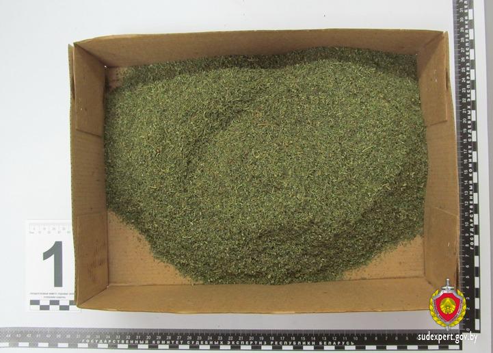В квартире брестчанина обнаружено свыше 200 грамм марихуаны